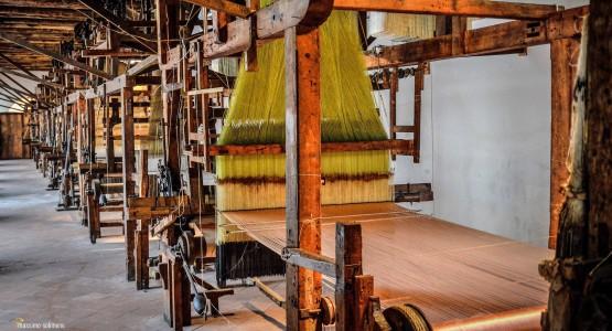 Biglietto Museo della seta Belvedere di San Leucio